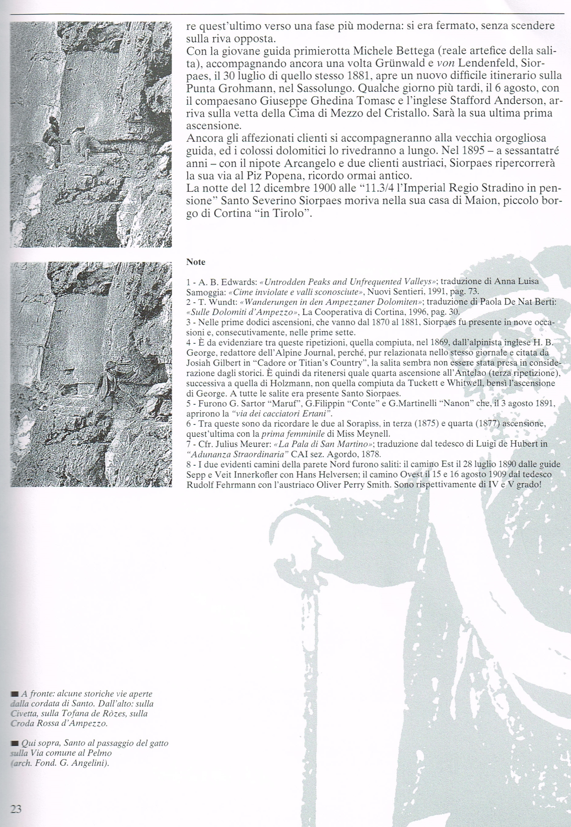 Siorpaes 7