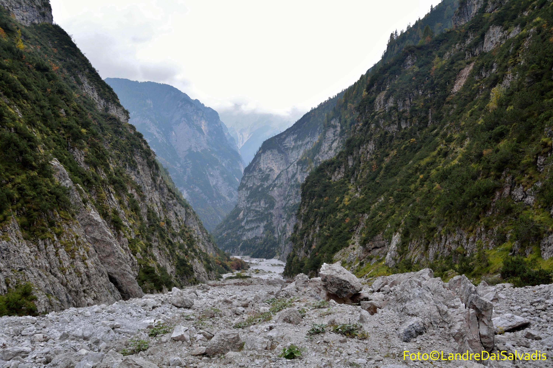 Quasi in Val Cimoliana.