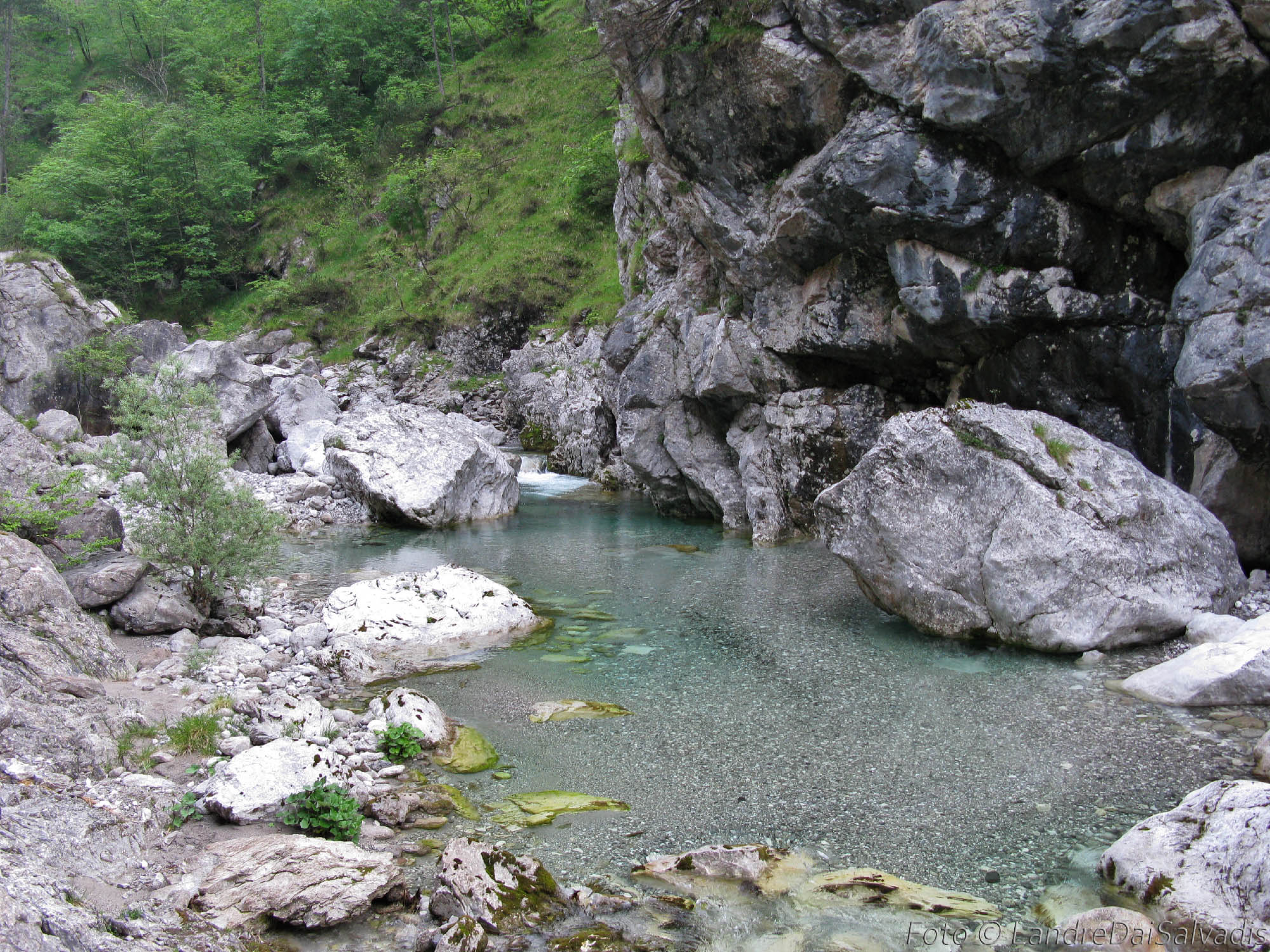 Canal G. Meduna-04