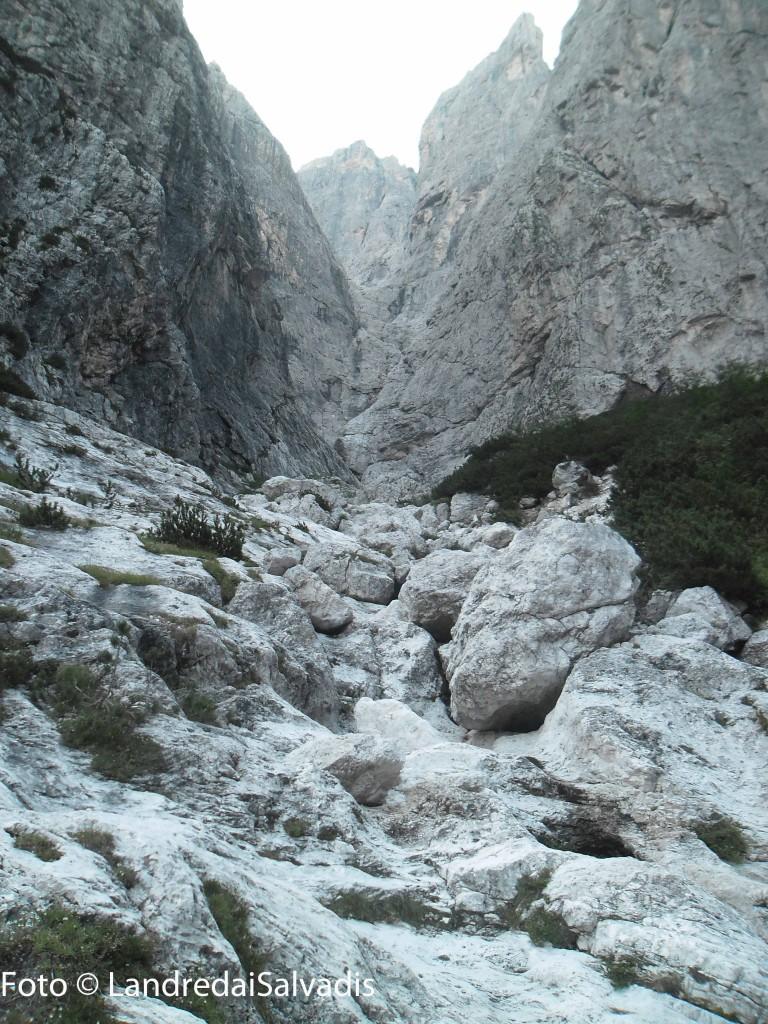 Val Rotta, un'immersione nel selvaggio.