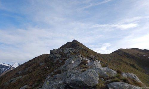 Cima Bleis (2628m) e Monte Tonale Occidentale (2694m) – Un anello a cavallo della cresta